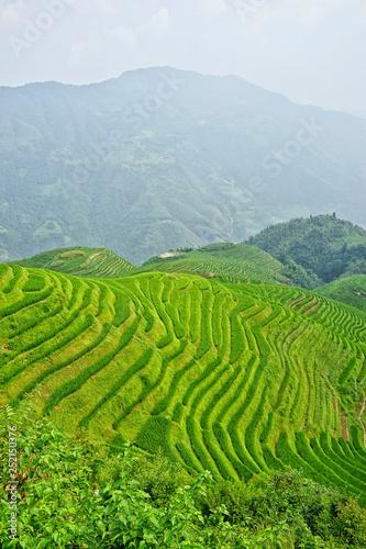 Fotobehang Rijstvelden Longji Ping'an Terraced Fields, Village, Guangxi Autonomous Region, China, asia