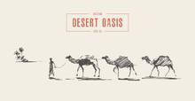 Caravan Camels Oasis Desert Draw Vector Sketch