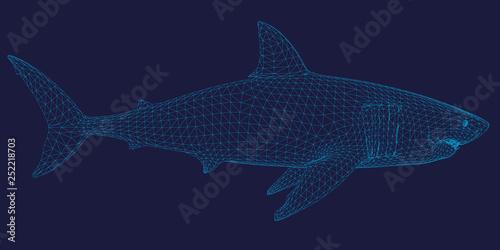 Photo Polygonal shark frame of blue lines on a dark background