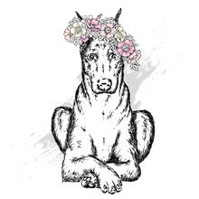 A Beautiful Dog In A Wreath Of Wild Rose. Vector Illustration For Postcard Or Poster, Print For Clothes. Spring And Summer, A Bouquet Of Flowers. Vintage And Retro. Hipster. Cute Puppy.