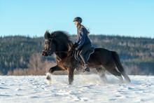 Swedish Girl Riding Her Icelan...