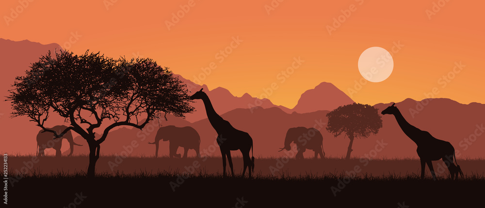Fototapeta Realistic illustration of a mountain landscape on safari in Kenya, Africa. Giraffes and elephants with trees. Orange sky with sun, vector