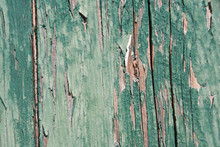 Vintage Wood Background With Peeling Green Paint. Wood Wallpaper In Selective Focus