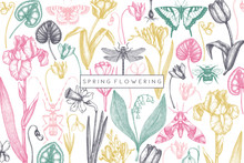 Spring Flowers Background. Flo...