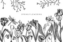 First Spring Flowers Design.  ...