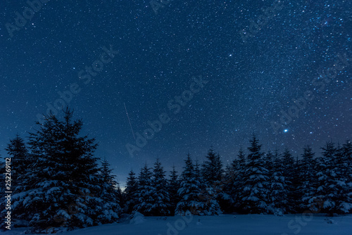 Tuinposter Nachtblauw dark sky full of shiny stars in carpathian mountains in winter forest at night