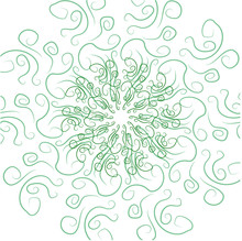 Green Curls In A Circular Pattern On A White Background