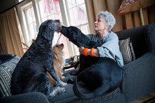 Woman Sits With Her Three Dogs