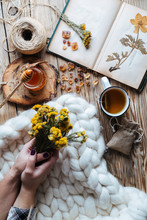 From Above Hands Of Unrecognizable Lady Holding Bunch Of Wild Flowers While Lying On Thick Soft Blanket Near Tea With Honey And Notebook With Dried Plants