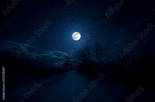 Mountain Road through the forest on a full moon night Canvas-taulu