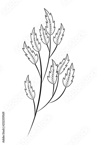 Fototapety, obrazy: leaves bouquet nature drawing