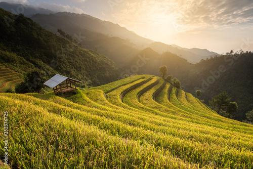 Fotobehang Rijstvelden Beautiful landscape rice fields on terraced of Mu Cang Chai