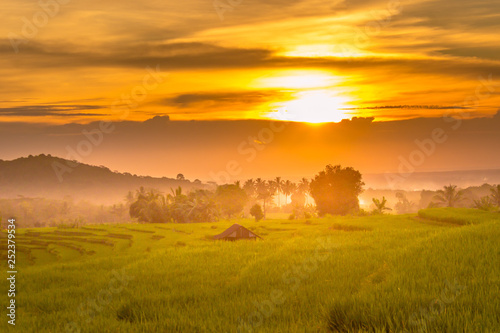 Fotobehang Cultuur indonesia beauty landscape at paddy fields in north bengkulu natural beauty of bengkulu utara indonesia with mountain barisan and green nature