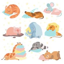 Cute Animals Sleeping Set, Cat, Dog, Mouse, Pig, Elephant, Lion, Giraffe, Raccoon, Bear Lying On Pillows Vector Illustration