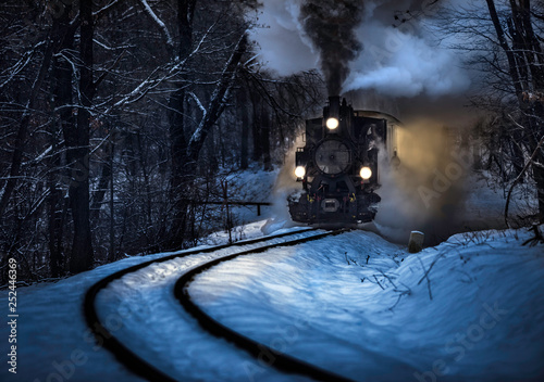 Fotomural Budapest, Hungary - Beautiful winter forest scene with snow and old steam locomo