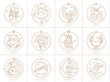 Vector Signs Of The Zodiac In ...