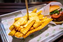 Famous Hamburger Of Eastern America, USA