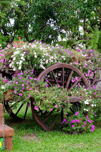 Beautiful Garden Around The House Beautiful Garden Decorated With