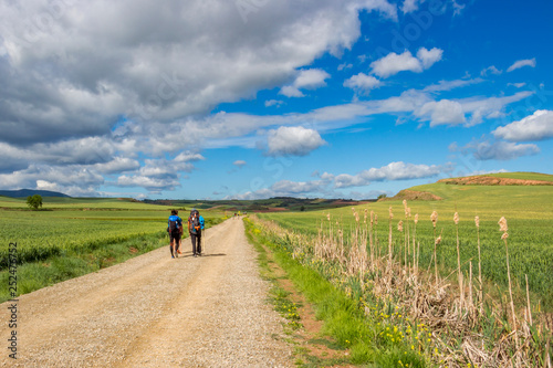 Rear view of pilgrims on an unpaved country road on the Way of St. James, Camino de Santiago between Azofra and Ciruena in La Rioja, Spain under a beautiful May sky