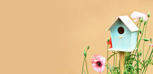 Bird House And Spring Flowers In The Garden