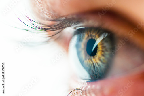 Pinturas sobre lienzo  Beautiful Human Eye with Long Eyelashes Macro View