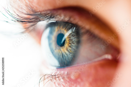 Fotomural  Beautiful Human Eye with Long Eyelashes Macro View