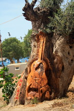 A Guitar Carved On The Tree On The Matala Beach On The Crete Island.
