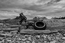 An Old Tire Lies Among Driftwood On West Beach, Whidbey Island Washington