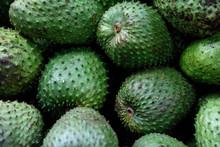 Tropical Colombian Soursop Fruit, Annona Muricata, Or Guanabana, Farmers Market, Medellin.