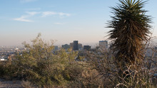 City Of El Paso With Buildings And Desert Vegetation In A Sunny Day