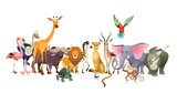 Fototapeta Fototapety na ścianę do pokoju dziecięcego - Wild animals. Safari wildlife africa happy animal lion zebra elephant rhino parrot giraffe ostrich flamingo cute jungle