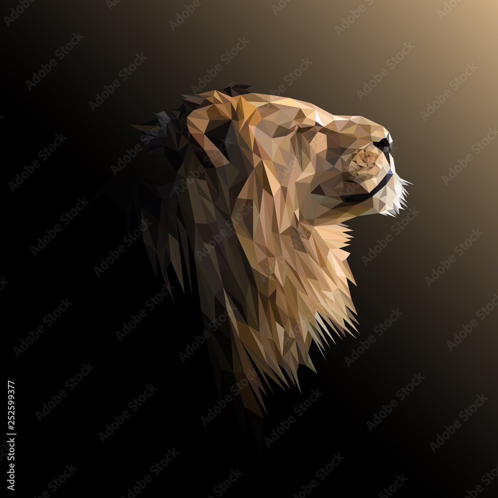 Fototapeta Lion low poly design. Triangle vector illustration.