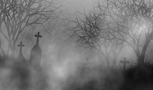 Cemetery In Creepy Forest Conc...
