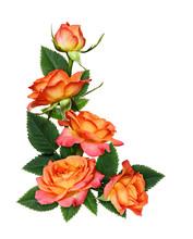 Orange Rose Flowers In A Corner Arrangement
