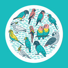 Tropical Birds Round Concept Banner In Line Style