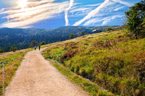 Fototapeta Mountain trail in Karkonosze obraz