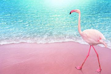 ružičasta ptica flamngo, pješčana plaža i pozadina koncepta nježnog plavog oceanskog vala