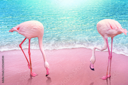 pink flamingo on pink sandy beach and soft blue ocean wave summer concept background