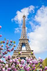 FototapetaEiffel tower close up, France