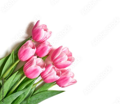 Garden Poster Floral Bukiet różowych tulipanów
