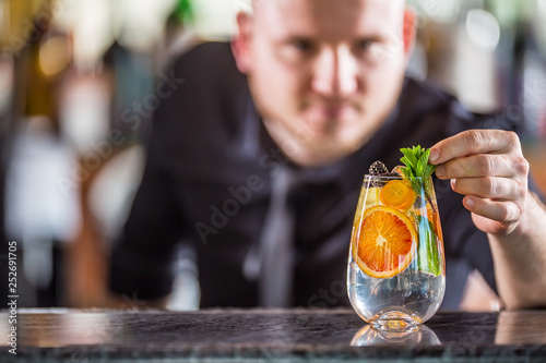 Foto op Canvas Alcohol Professional barman decorating gin tonic cocktail drink and decorated it with mint herbs