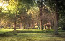 Public Park Scenery Landscape With Gazebo Sunset Sunlight In Royal Garden Peradeniya In Sri Lanka Nearby Kandy Surroundings