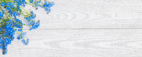 Papiers peints Printemps Rustic light background with forget-me-not flowers