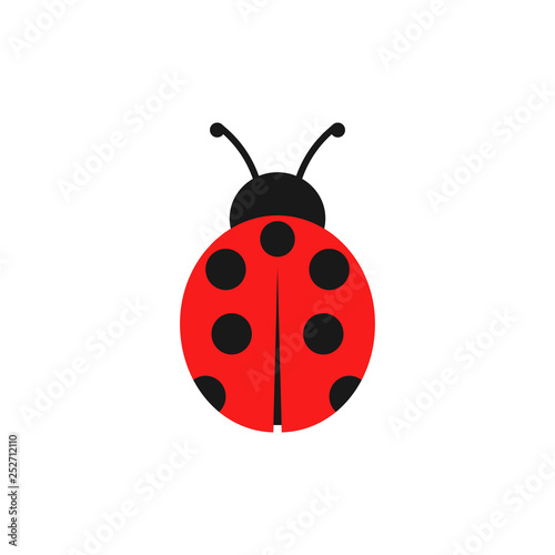 Fototapeta Ladybug illustration. Vector. Isolated.