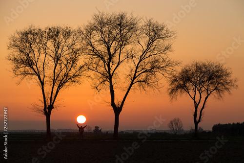 Zachód słońca wśród drzew