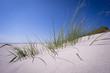 Urlaub am Meer - Sanddünen mit Dünengras