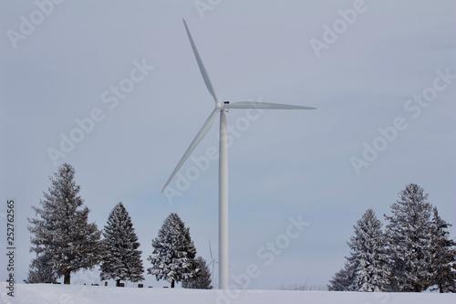 Fotografie, Obraz  Electric wind turbines on a snowy rural field near a small cemetery in winter