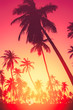 canvas print picture - Copy space of tropical palm tree with sun light on sky background.