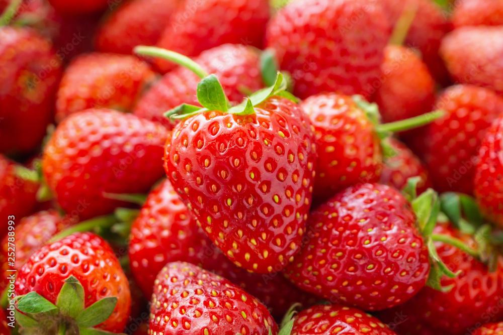 Fototapety, obrazy: Fresh organic red ripe Strawberry fruit background closeup