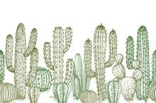 Cactus Seamless Pattern. Sketch Desert Cactuses Plants Endless Border For Western Landscape Vector Illustration. Seamless Pattern Cactus Sketch, Floral Botanical